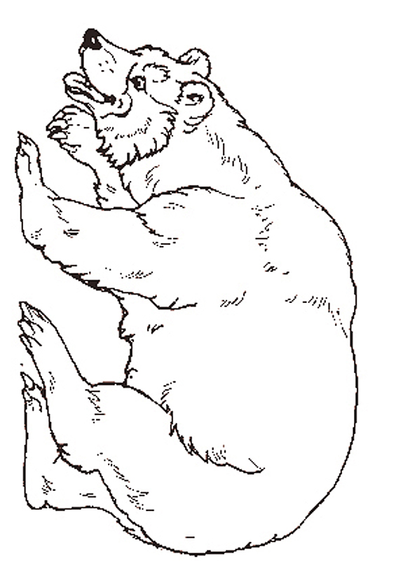The bear coloring page for Free smokey the bear coloring pages