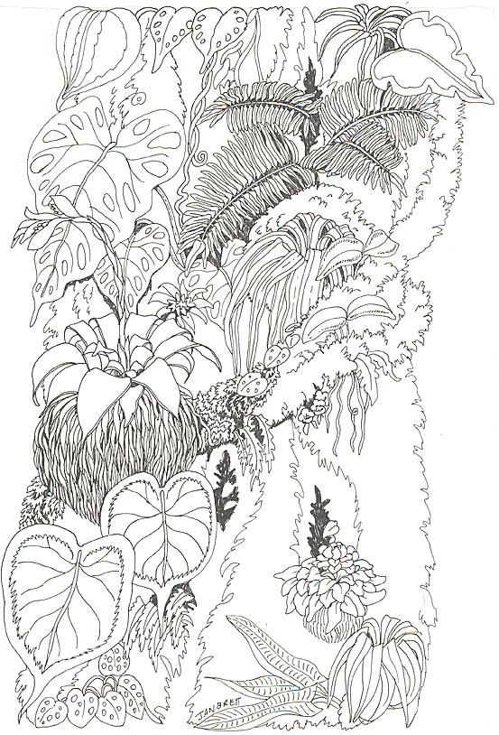 umbrella coloring tree trunk 1